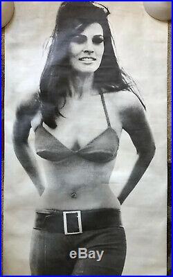 Raquel Welch Vintage Poster movie memorabilia Headshop Sexy Celebrity Pinup 60s