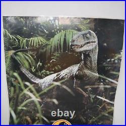 Vintage 1993 Jurassic Park Velociraptor Dinosaur Laminated Poster $82260 READ